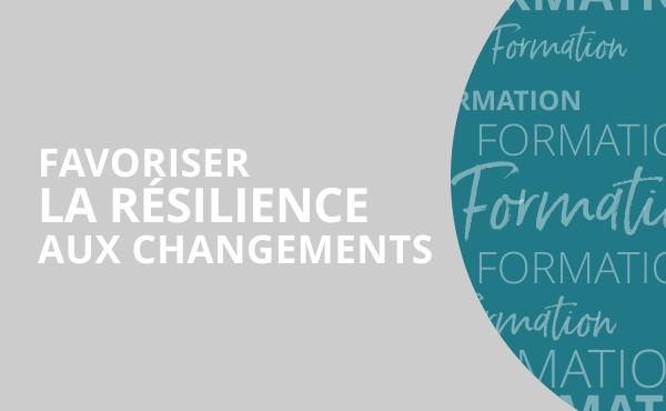 Image Formation Résilience aux changements